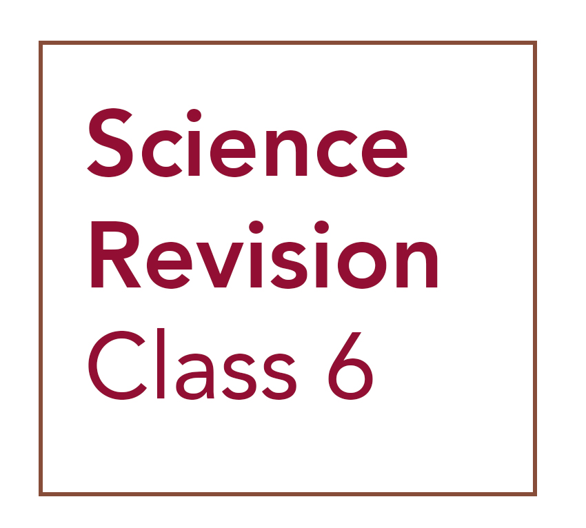 Class 6 Science Revision
